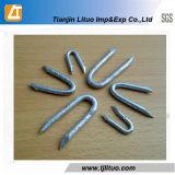 Высокое качество 1/2'-3' отполировало/гальванизированный U-Тип ногти