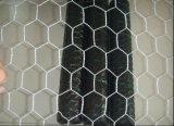 熱い販売の鳥小屋の金網か六角形の金網