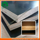 Alta qualidade Marine Film Faced Plywood com Reasonable Price (1220*2440mm)