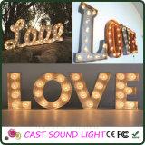 Luz da fantasia do sinal da letra do diodo emissor de luz para a decoração do casamento/partido/Natal