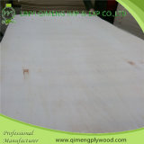 Linyi Qimeng Supply 3mm Poplar Plywood mit Good Quality
