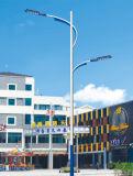 最もよい価格4mポーランド人20W LEDの太陽街灯