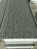 Panneau de mur extérieur gravant en relief métallique de la décoration Panel/PU