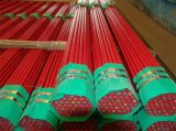 Pijpen van het Staal van de Sproeier van de Bescherming van de Brand van UL/FM ASTM A795 Sch10 de Rode Geschilderde