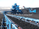 Industrieller Kohlenbandförderer/Beförderung-System