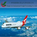 割引海外貨物出荷は中国からのマンサニヨメキシコにロジスティクスの貨物航空会社を評価する