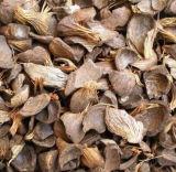 Боилер древесины 2ton Китая самый лучший и пара биомассы большой