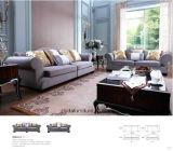 Sofa de tissu avec le bâti de sofa et le Tableau en bois de côté