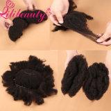 Поставка волос быстрых человеческих волос девственницы Balck поставки естественных китайская