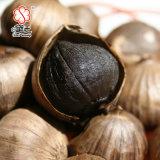 Singolo aglio organico cinese 200g del nero della lampadina