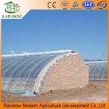 Garantía de 10 años Bayer reforzó el invernadero de la agricultura del plástico para la venta