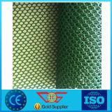 HDPE van de Norm van ISO het Plastic Blad van de Drainage Geonet Netto met Beste Kwaliteit