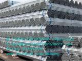 중국 공장에서 온실을%s 직류 전기를 통한 관