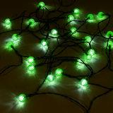 Im Freien 24 LED-Mehrfarbenkugel-Kugel-Zeichenkette-Solarlichter