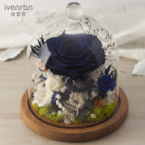 Flor natural del 100% para el regalo de boda de la promoción