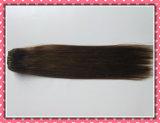 """[هيغقوليتي] 100% [هومن هير] نسيج [كليب-ين] شعر إمتدادات 20 """" لون 6# [8بكس] /Set"""