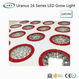Les Élevé-Lumens Uranus 16 séries DEL se développent légers pour la culture commerciale