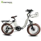AMS-Tdn-01 20inch faltbarer fetter Gummireifen-elektrisches Fahrrad