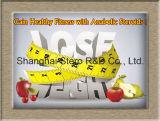 건강한 체중 감소 스테로이드는 Orlistat CAS-96829-58-2를 강화한다