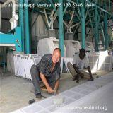 Linha de processamento do milho da fábrica de China