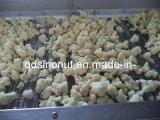 Новым Cauliflower 2014 замерли сезоном, котор