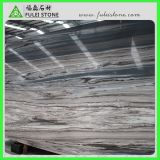 Italienisches Marble Palissandro Blue Marble Slabs mit Good Quality