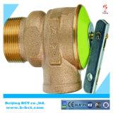 Válvula de seguridad de cobre amarillo de los matrials, color de plata, color del metal, regulador BCTSV03 1.5-8Bar del gas del color de Nicel