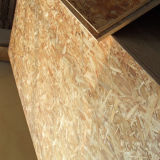 Dekoratives OSB (orientierter Strang-Vorstand) Panel (GL102)