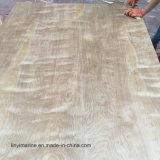 Madera contrachapada natural decorativa del abedul de la madera contrachapada 18m m para el mercado americano