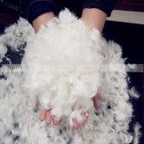 O ganso branco lavado empluma-se para baixo 90/10 para revestimentos
