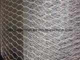 PVC 입히는 치킨 와이어 메시 /Galvanized 6각형 그물세공