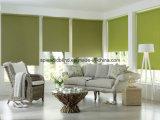 Persianas de rodillo de la tela y cortina dobles (SGD-R-3099)