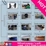 La rete fissa ad alta resistenza della maglia di prezzi di fabbrica 358 ricchi di Anti-Arrampica la rete fissa (13 anni di fabbrica)