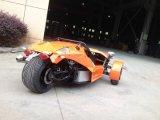 Tres Ruedas ZTR 250 cc para Adultos