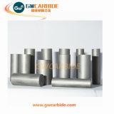 Matrijzen van het Smeedstuk van het Carbide van het wolfram de Koude en de Matrijzen van de Tekening