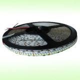 Doppelte Zeile 144LEDs/M SMD2835&Nbsp; 4000k Pure&Nbsp; Weiße LED-Streifen-Lichter