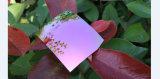 Lente polarizada forma dos óculos de sol do espelho da lente do Tac (luz de R - roxo)