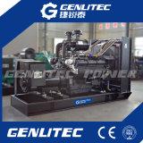 Conjunto de generador diesel de la potencia resistente de Shangchai (50-600KW)