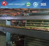 De Kooi van de Laag van het Ei van de Kip van de Batterij van het Landbouwbedrijf van het gevogelte