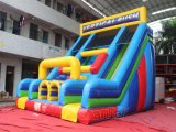 Prix ​​d'usine Double Lane Inflatable Vertical Rush Slide for Fun (chsl582)