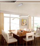 Dos años de la garantía de lámpara pendiente de la alta calidad