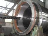 Moldeado centrífugo para la pieza de acero fundido inoxidable
