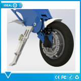 携帯用電気バイクの電気自転車の10インチの後部車輪が付いている折るEバイクの電気バイク