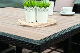 Rattan Patio Wicker Garden Polywood Outdoor California Dining Set Furniture (J382)