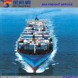 Service d'expédition promotionnel de logistique de fret aérien de fret maritime