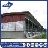 Huhn-Schicht-Haus/Geflügelfarmen in Kenia