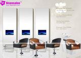 De populaire Stoel Van uitstekende kwaliteit van de Salon van de Stoel van de Kapper van de Spiegel van de Salon (P2043F)