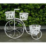 Decoración al aire libre de la bicicleta del soporte blanco antiguo de la planta