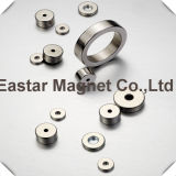 Magnete di NdFeB della qualità superiore con il magnete di certificazione dello SGS RoHS