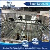 Piattaforma di piccola dimensione della struttura d'acciaio per la mostra giusta di cantone